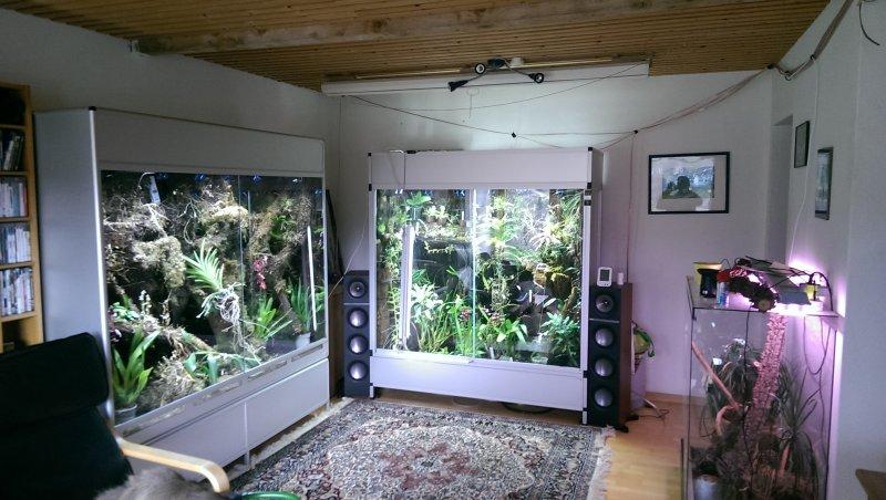 Led Beleuchtung Orchideen : LEDWuchslichtPflanzenlicht  Orchideenforum